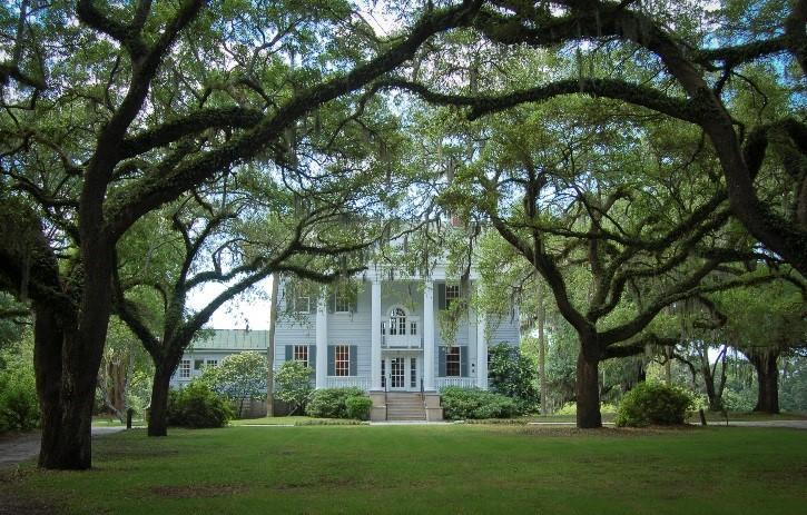 mcleod-plantation