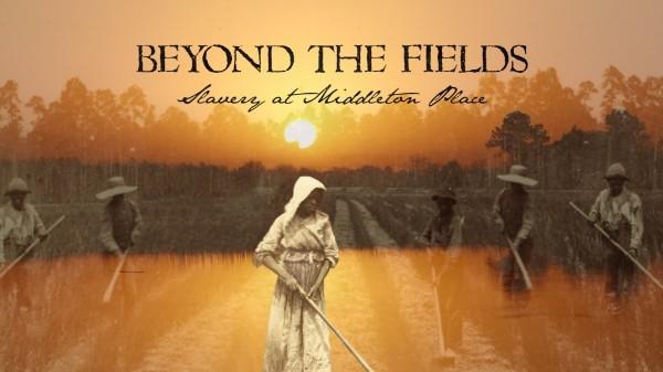 middleton-fields