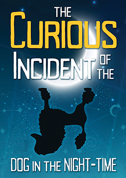 curiousincident_web